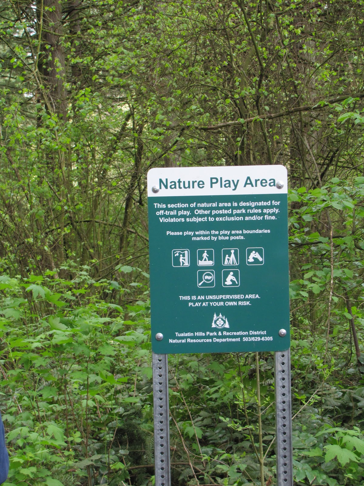 Natural Play Area Guidelines - Learning Landscapes Design